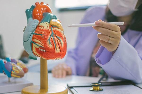 بیماری دریچه های قلب