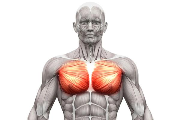 کشیدگی عضلانی و آسیب های دیواره قفسه سینه